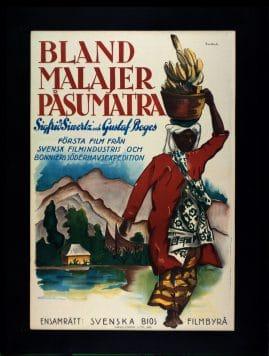 Bland malajer på Sumatra - image 1