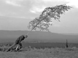 Att skriva filmmanus – Ida Kjellin om sitt yrke