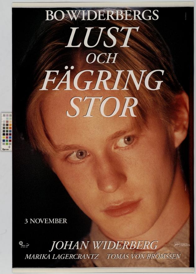 all things fair 1995 movie in english