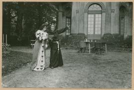 Regina von Emmeritz och Konung Gustaf II Adolf - image 44