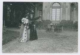 Regina von Emmeritz och Konung Gustaf II Adolf - image 66