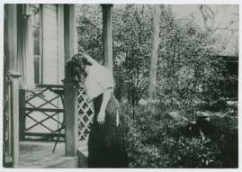 Trädgårdsmästaren - image 7