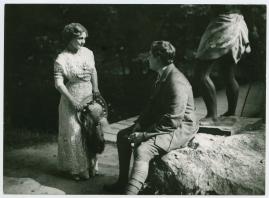 Lady Marions sommarflirt : Lustspel - image 14