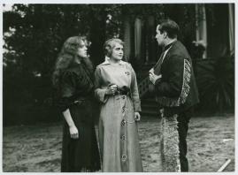 Halvblod : Drama i 4 akter - image 16