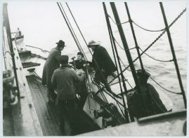 Havsgamar : Drama från de yttersta skären i 3 akter - image 3