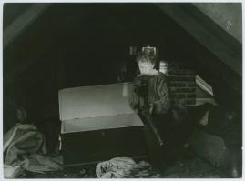 Havsgamar - image 67