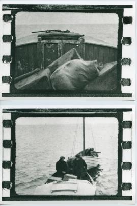 Havsgamar : Drama från de yttersta skären i 3 akter - image 52