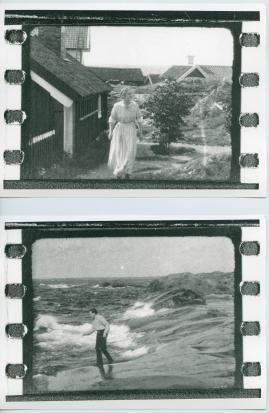 Havsgamar : Drama från de yttersta skären i 3 akter - image 13