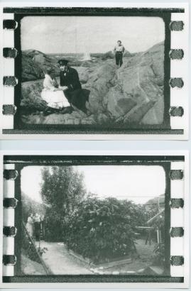 Havsgamar : Drama från de yttersta skären i 3 akter - image 36