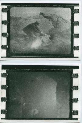 Havsgamar : Drama från de yttersta skären i 3 akter - image 78