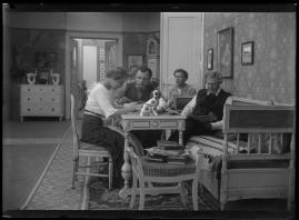 Havsgamar : Drama från de yttersta skären i 3 akter - image 100