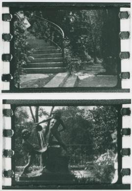 Millers dokument - image 31