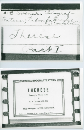 Therèse - image 100