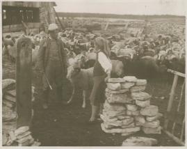 Berg-Ejvind och hans hustru - image 101