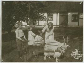 Mästerkatten i stövlar - image 78
