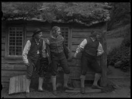 Ett farligt frieri : Folkkomedi i fyra akter - image 14