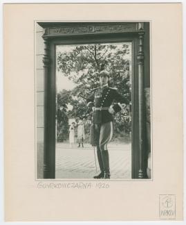 Lieutenant Tophat - image 71