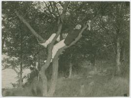 Robinson i skärgården - image 27
