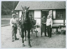 Kvarnen - image 48