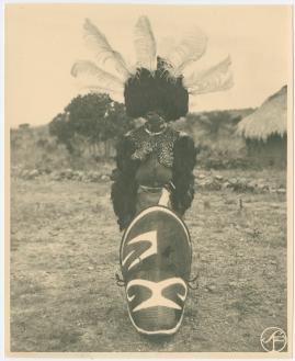 Bland vildar och vilda djur : Svenska Biografteaterns expedition till Brittiska Ostafrika åren 1919-1921 - image 9