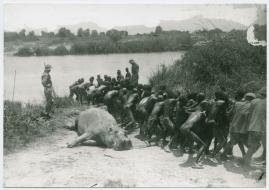 Med Prins Wilhelm på afrikanska jaktstigar - image 59