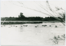 Med Prins Wilhelm på afrikanska jaktstigar - image 7
