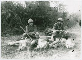 Med Prins Wilhelm på afrikanska jaktstigar - image 11