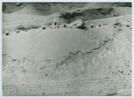 Det omringade huset - image 2