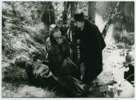 Gunnar Hedes saga - image 48