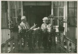 Anna-Clara och hennes bröder - image 3