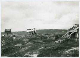 I fjällfolkets land : Dagar i Lappland hos Inka Länta och hennes fränder - image 14