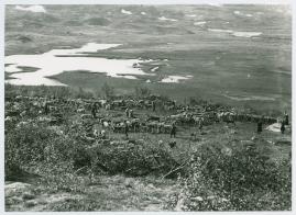 I fjällfolkets land : Dagar i Lappland hos Inka Länta och hennes fränder - image 7