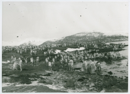 I fjällfolkets land : Dagar i Lappland hos Inka Länta och hennes fränder - image 18