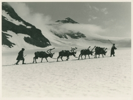 I fjällfolkets land : Dagar i Lappland hos Inka Länta och hennes fränder - image 10