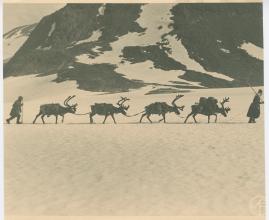 I fjällfolkets land : Dagar i Lappland hos Inka Länta och hennes fränder - image 5