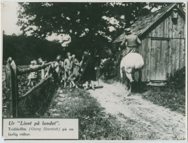 Livet på landet - image 39
