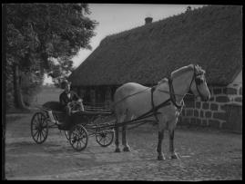 Livet på landet - image 48