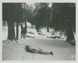 Karl XII - image 367