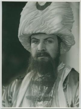 Karl XII - image 381