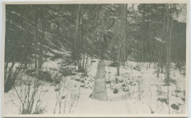 Karl XII - image 323