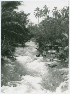 Bland malajer på Sumatra - image 68