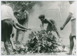 Bland malajer på Sumatra - image 45