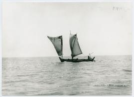 Bland malajer på Sumatra - image 5