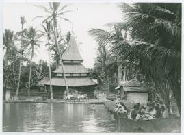 Bland malajer på Sumatra - image 102