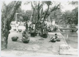 Bland malajer på Sumatra - image 61