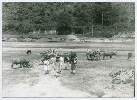 Bland malajer på Sumatra - image 120
