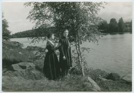 Ingmarsarvet - image 87