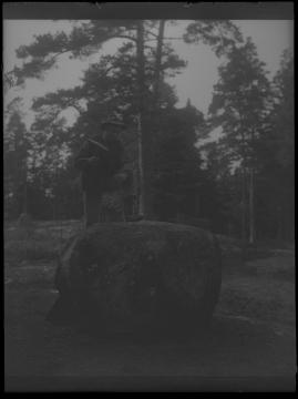 Hin och smålänningen - image 44