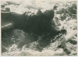 Stormens barn - image 52
