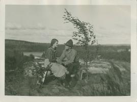 Ådalens poesi - image 14